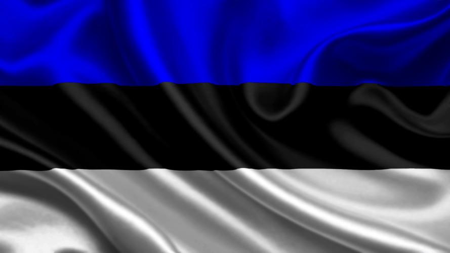 перевод документов на эстонский, с эстонского, цены, скидки, заказать